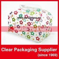 Plastic Clear Pillow Box