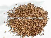 attractive product clay pellets soil