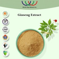 100 Soluble In Water Panax Ginseng