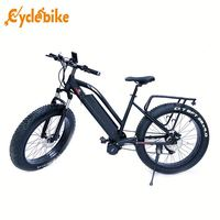 High Quality E Bike Electric 1000w