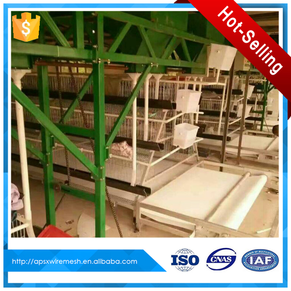 poultry farm house design chicken rearing layer cage