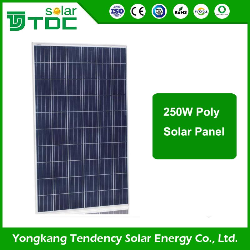 Trade Assurance Anodized Aluminium Alloy 200w high efficiency poly solar panel s