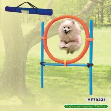 Dog Agility Training Product Accessories