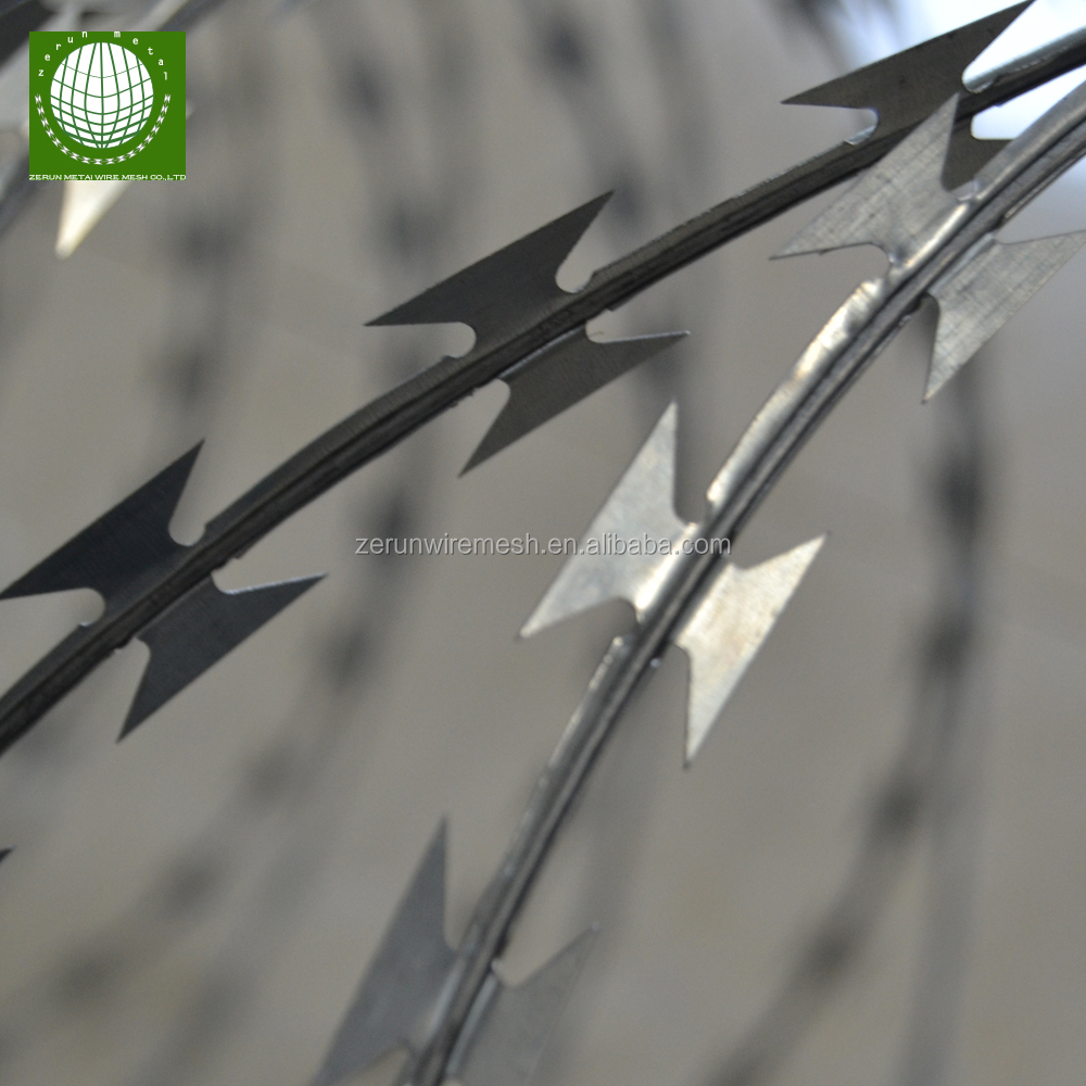 Boundary Wall Security System / Airport Razor Barbed Wire - Buy ...