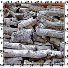 manufacture and supply apple tree jujube tree Charcoal