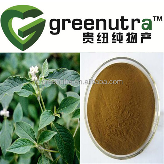 Hot sale Natural Achyranthes Bidentata Extract Powder