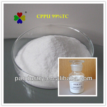 Hot sale PGR CPPU 99% Plant Growth Stimulant