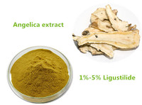 Iso9001 factory supply Natural Chinese Angelica extract/ Dong Quai extract Kosher Halal Certified