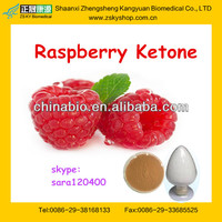 natural raspberry ketone made in china