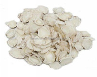Free sample 100% natural high quality Angelica root extract