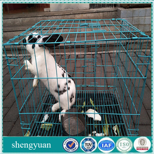 1x1 galvanized welded wire mesh cheap for rabbit cage