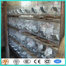 3 tiers 12 cells 3 tiers 12 cells commercial rabbit cages for breeding rabbit