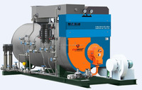 3t China new type inverter economizer heat recovery steam boiler manufacturer