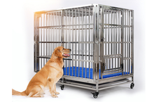 Carrier & House Type heavy duty metal dog kennel outdoor stainless steel dog cage singapore sale