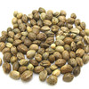 High Quality hemp seeds, hemp seeds,Big size hemp seed