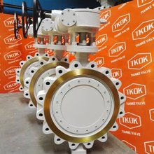 Worm Gear WCB/SS/304/316 Double Eccentric/Offset Butterfly Valve