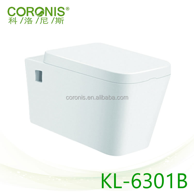 Concealed Cistern Water Saving Wall Hung Toilet Bathroom Closet