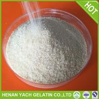 Professional gelatin seaweed for wholesales