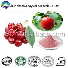 100% Water Soluble Choke Cherry Extract Powder