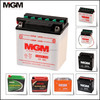 /product-detail/gtx5l-bs-motorcycle-battery-1745977812.html