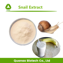 Pure natural animal extract snail extract powder / snail slime extract