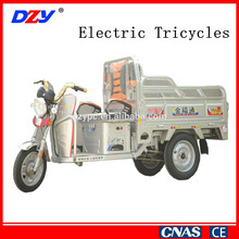 Large Capacity Adult Pedal Electric Tricycle Cargo