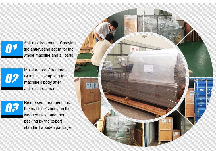 RoyalPharma Auto Pharmacy Tablet Blister Carton Box Packaging Machine