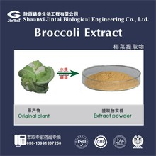 Natural High Quality Broccoli Seed Extract