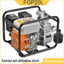 High Quality Ordinary Pressure Fgp20l Device Water Suck Pump Manufacture