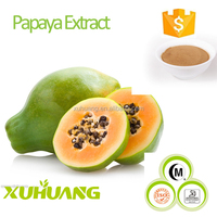 ISO/Kosher/Halal Certificate The Best Natural Herb Extract Papaya Extract