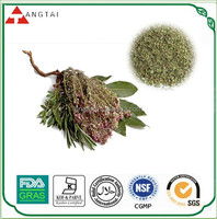 Dried thyme extract, Thymol 20%,30%, Extract Ratio 5:1, 10:1, 20:1