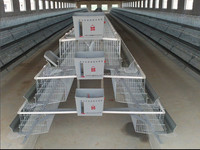 Layer Poultry Rearing Cage System