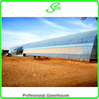 high tunnel agricultural green house for sale