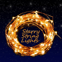 Dimmable LED Starry String Lights 33ft Copper Wire,5v Power Adapter