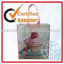 promotion pp non woven Girls travel bags