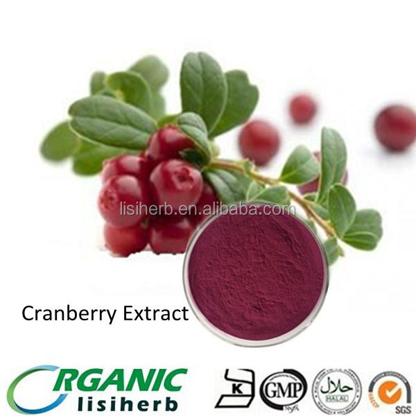 High quality Bilberry Extract Anthocyanin powder/ Bilberry P.E.