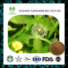 Low Price Top Quality Dandelion Extract for sale