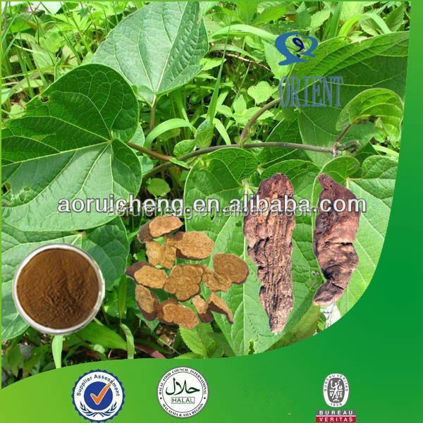100% Natural and Pure polygonum multiflorum extract/he shou wu extract/natural plant extract extract