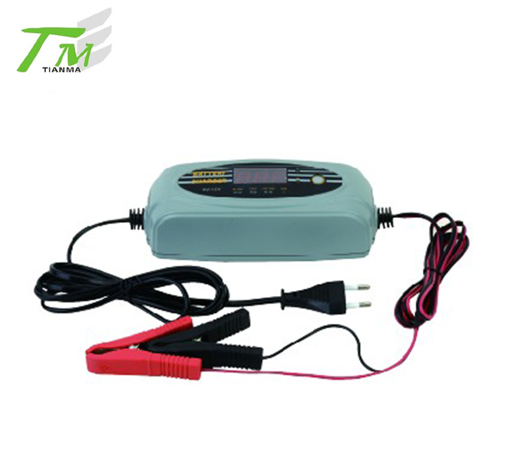 Export to European profession new mini car battery charger