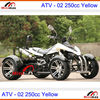 /product-detail/atv-250cc-4x4-racing-quad-fully-automatic-or-manual-gear-optional-with-reverse-1922872019.html