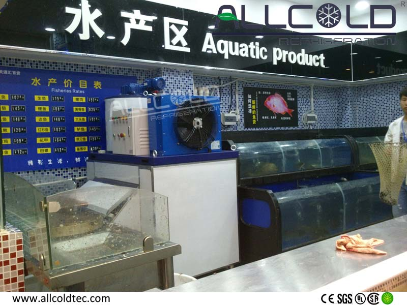 0.5Ton snow flake ice machine with good quality for sale
