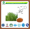 GMP factory supply Hot sale high quality Salix alba L./White Willow Bark Extract /Salicin