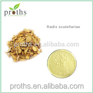 High quality huang qin - radix scutellariae