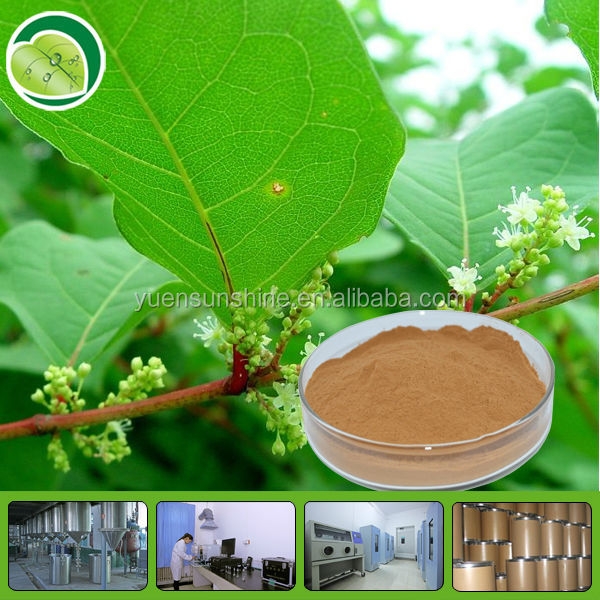 Ease muscular tone kava roots extract powder