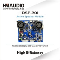 DSP - 201 Style DSP module processing machine From China Factory