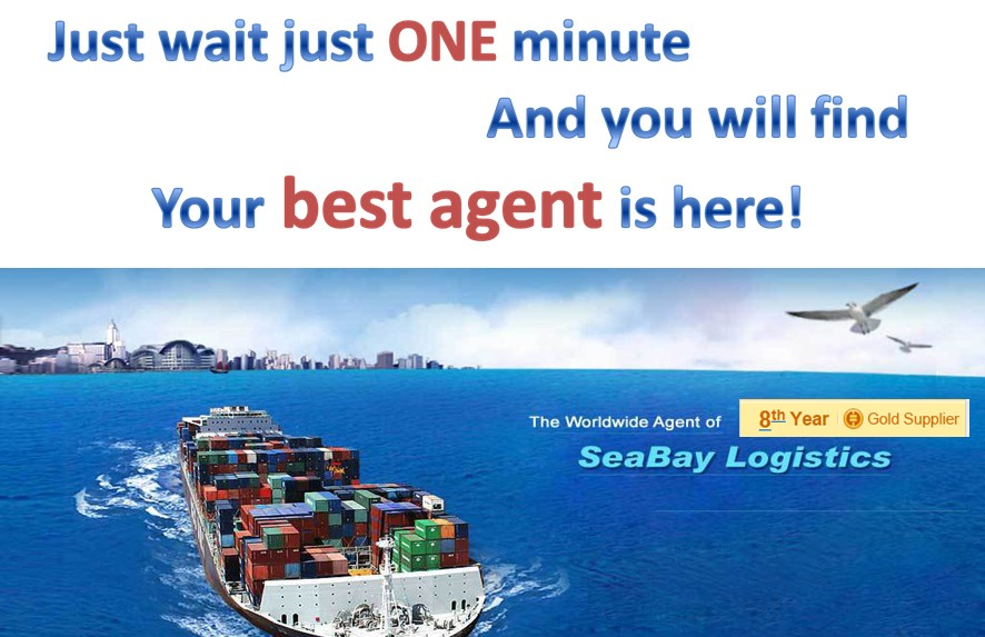 freight forwarder from China to Bolivia