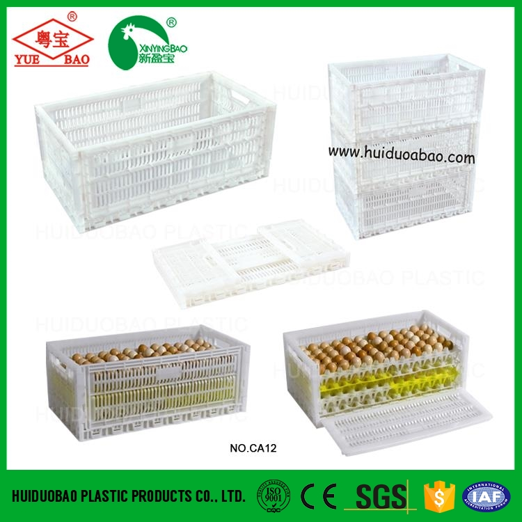 Plastic Chicken Coop, Transport Cage For Poultry, Equipments Poultry
