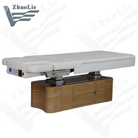Electric Massage Table, Thermal Massage Bed(D1501)