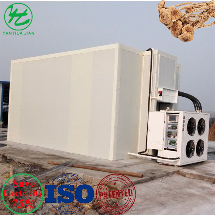 Energy Saving 75% Heat Pump Mushroom Fungus Morel Commercial Fruit Dehydrator