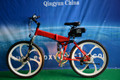 electric bicycle 250W 36V CE EN15194 beach bike